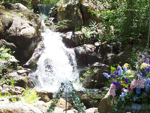 flowing waterfall as background during wedding ceremony in Nevada City